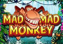 Mad Mad Monkey A Feature Rich Bonus Game Free Spins