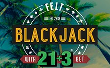 Blackjacka 21 ± 3