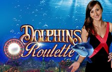Dolphins Roulette