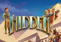 Hidden Slots